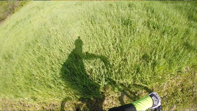 Screen Shot 2014-05-19 at 2.37.35 PM