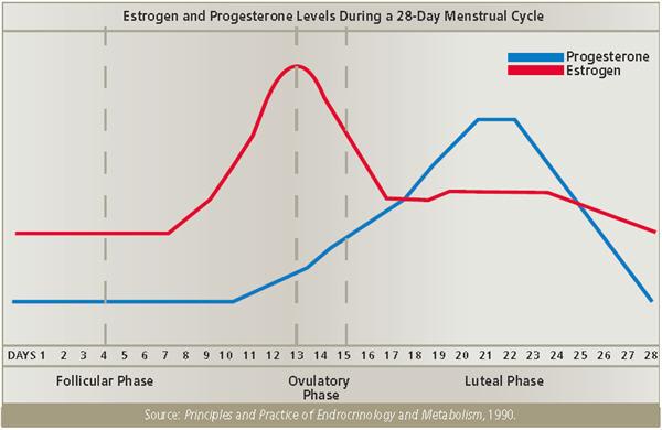 estrogen_progesterone_cycle