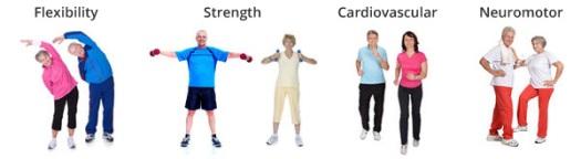 four-components-senior-fitness-training-programs