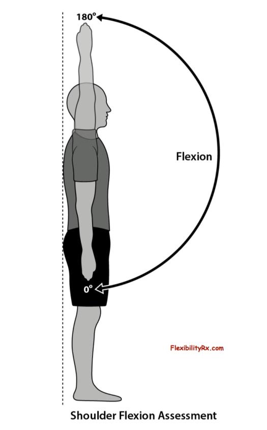 Improving-Shoulder-Flexion